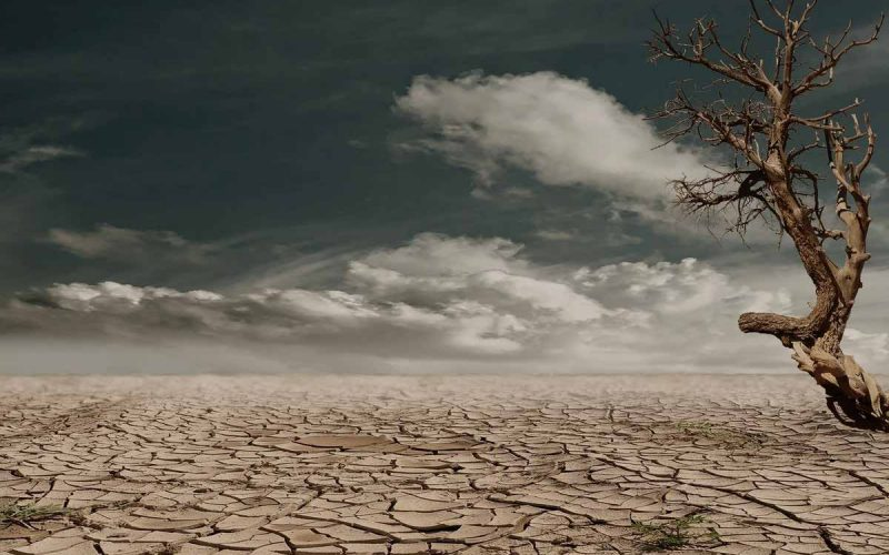 Desertification definition causes effects solutions