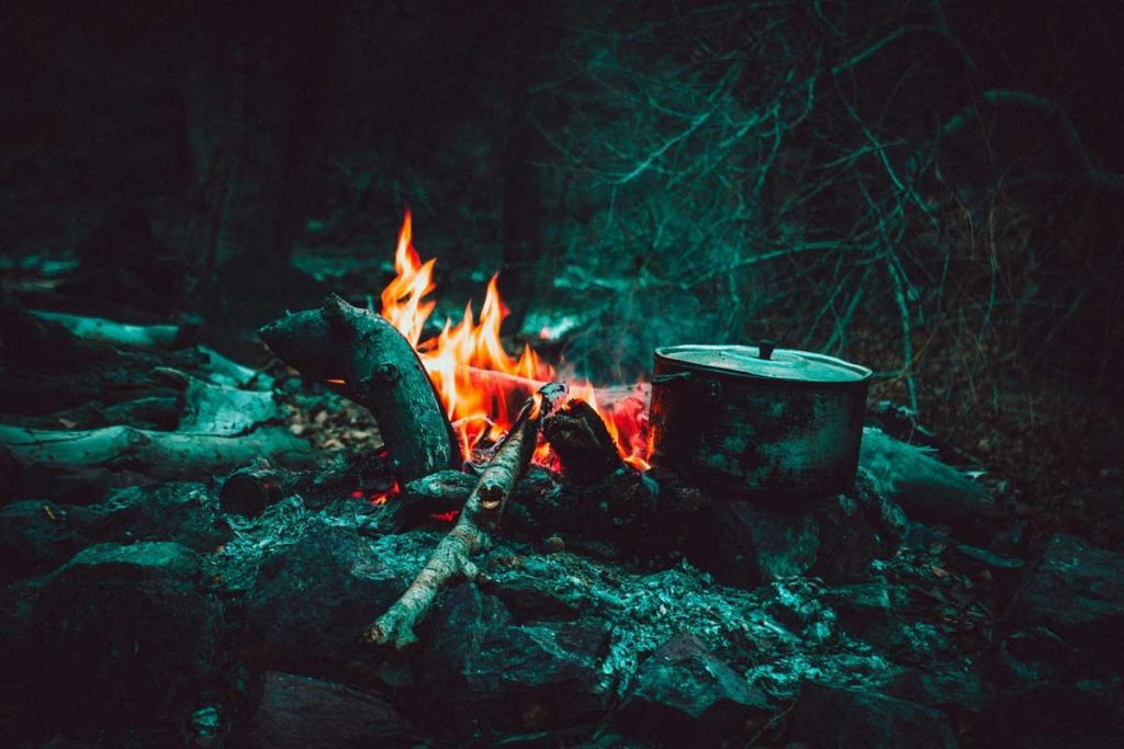 Lighting fire and cooking are rewilding skills to learn