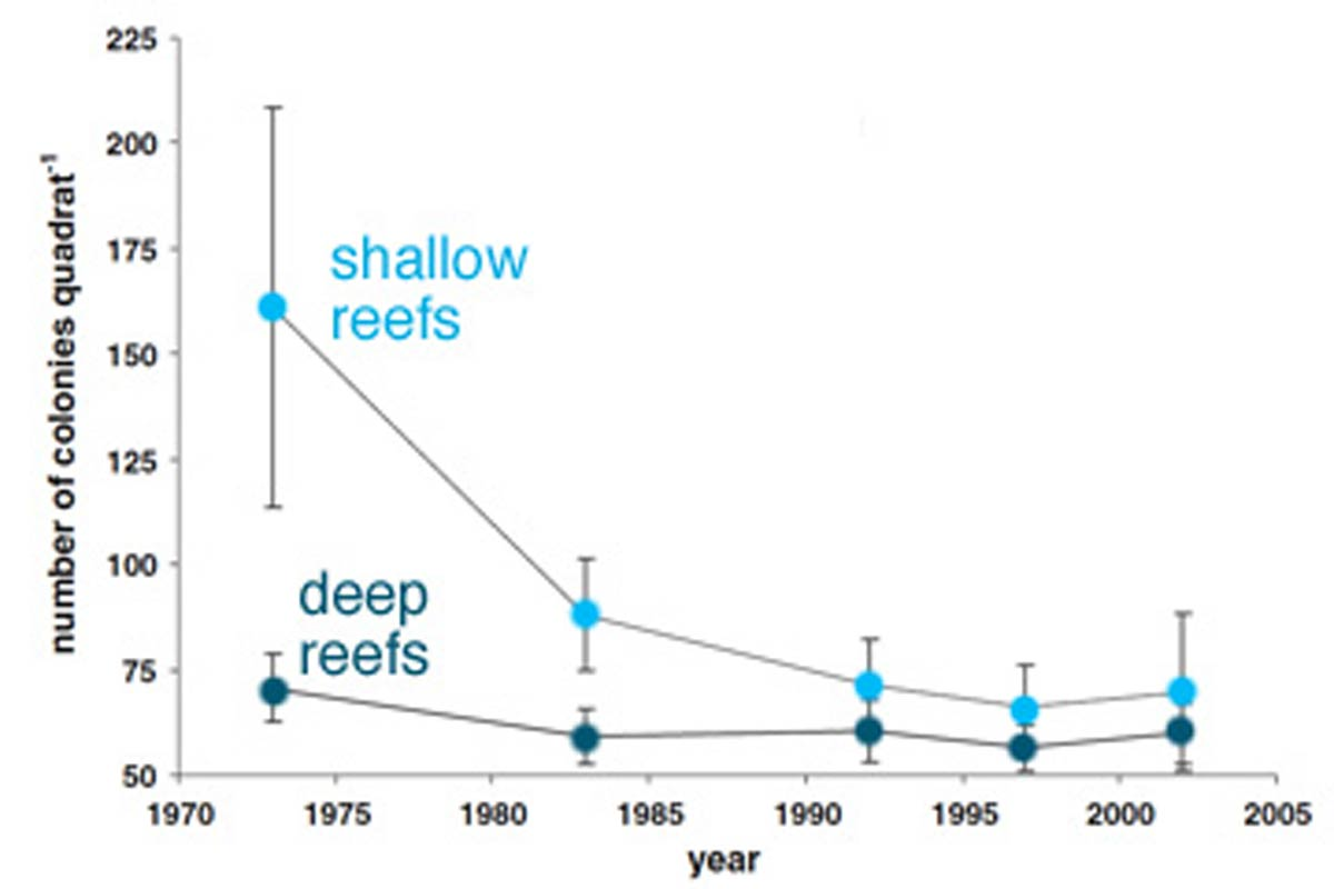 coral reefs decline over 30 years