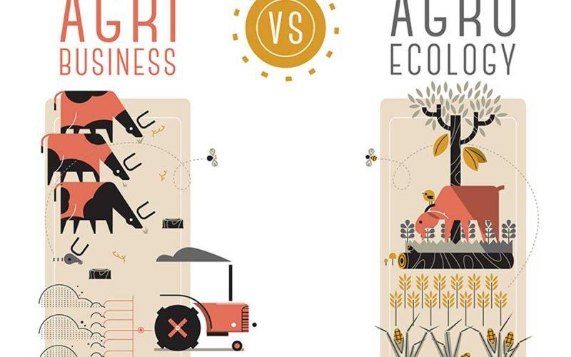 Agroecology Farming