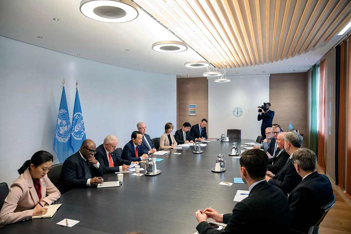 Overcultivation Solutions: FAO and UN