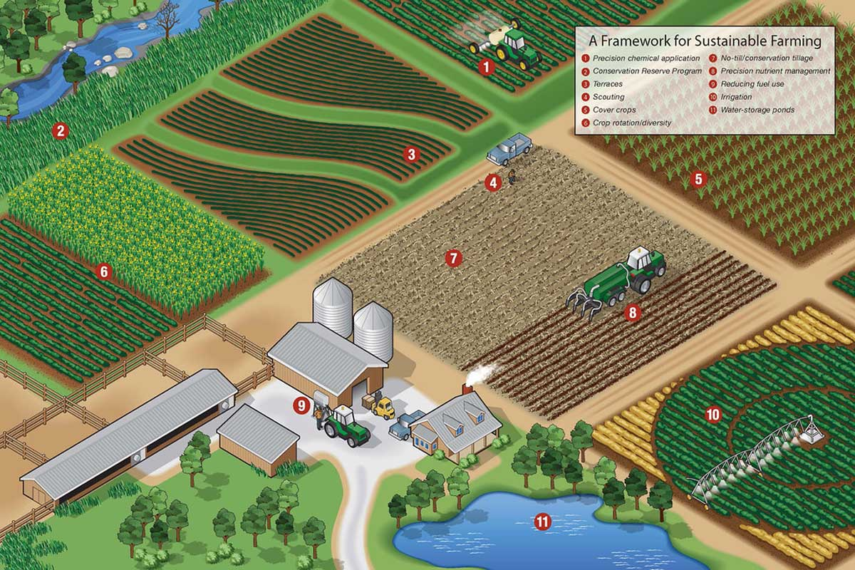 Sustainable Farming Methods Infographic