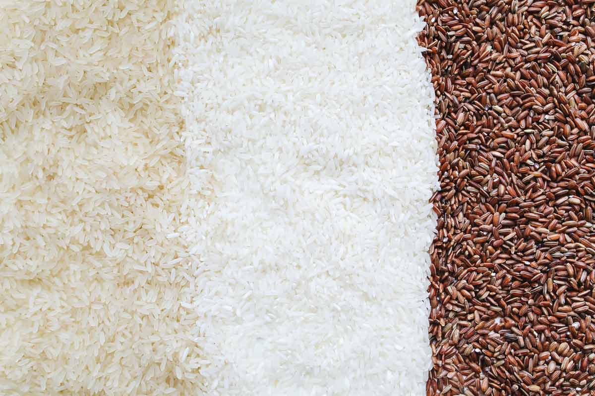 Difference between white and brown rice